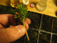fir-tree-cuttings-3