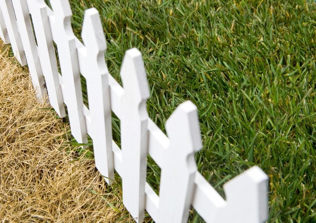 lawn-fence